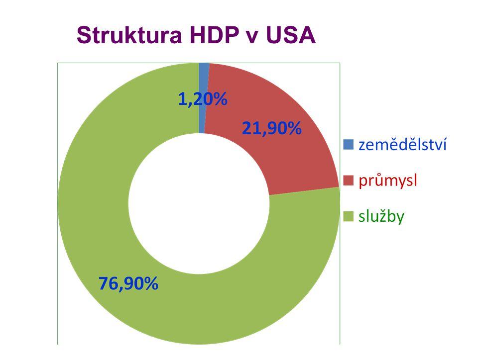Struktura HDP v USA