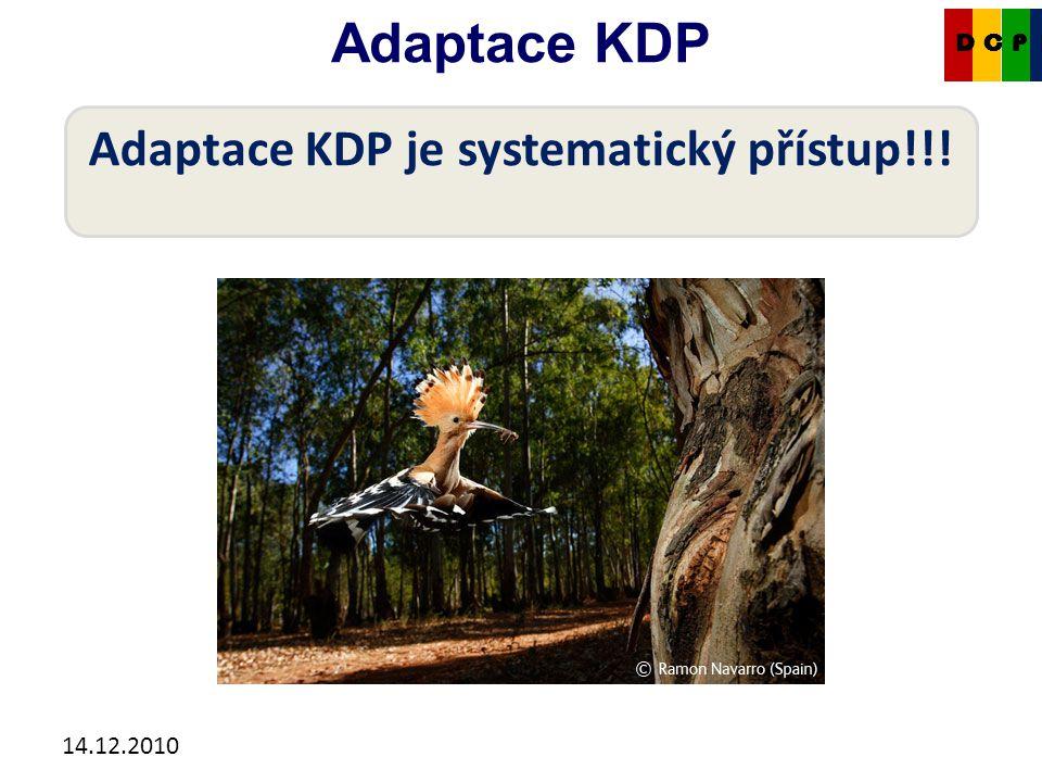 14.12.2010 Adaptace KDP CKDP Adaptace KDP je systematický přístup!!!