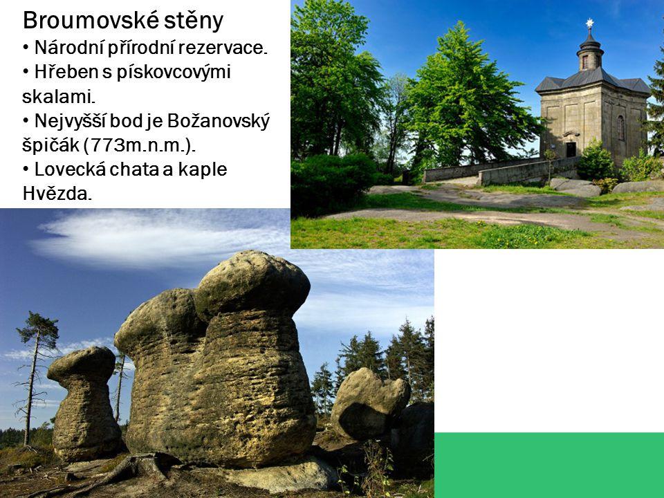 Broumovské stěny Národní přírodní rezervace. Hřeben s pískovcovými skalami.