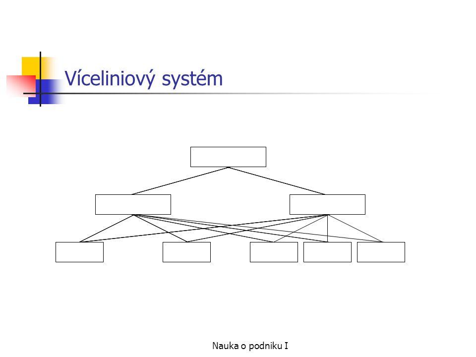 Nauka o podniku I Víceliniový systém