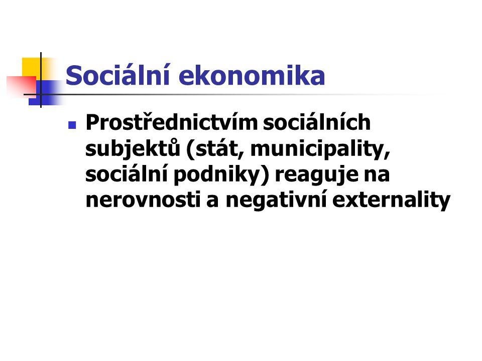 Prostřednictvím sociálních subjektů (stát, municipality, sociální podniky) reaguje na nerovnosti a negativní externality