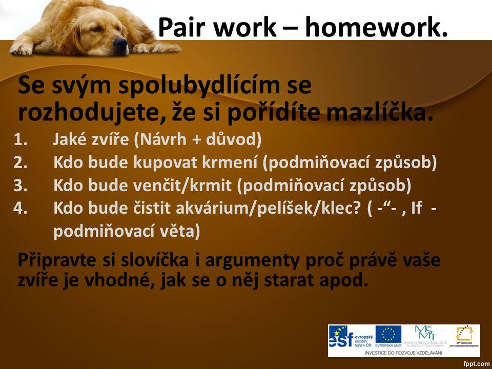Pair work – homework. Se svým spolubydlícím se rozhodujete, že si pořídíte mazlíčka.