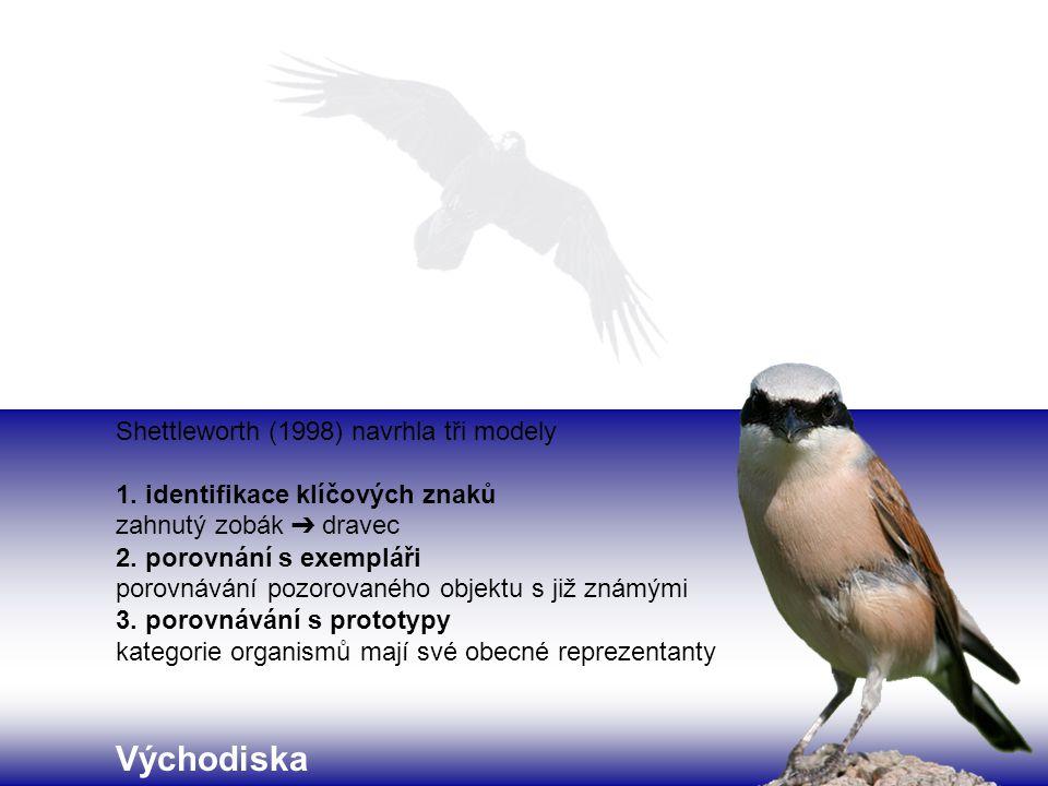 Shettleworth (1998) navrhla tři modely 1. identifikace klíčových znaků zahnutý zobák ➔ dravec 2. porovnání s exempláři porovnávání pozorovaného objekt