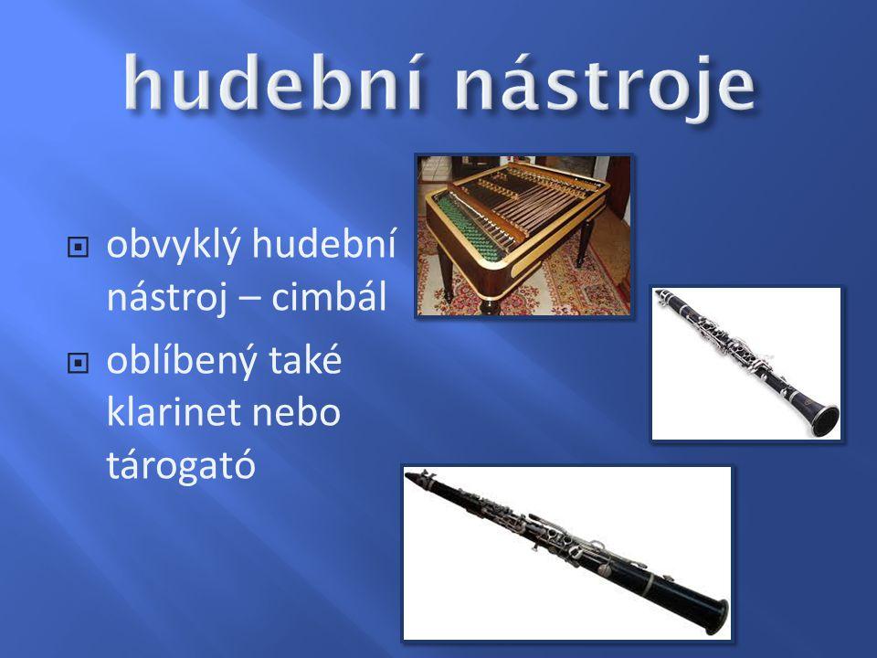  obvyklý hudební nástroj – cimbál  oblíbený také klarinet nebo tárogató