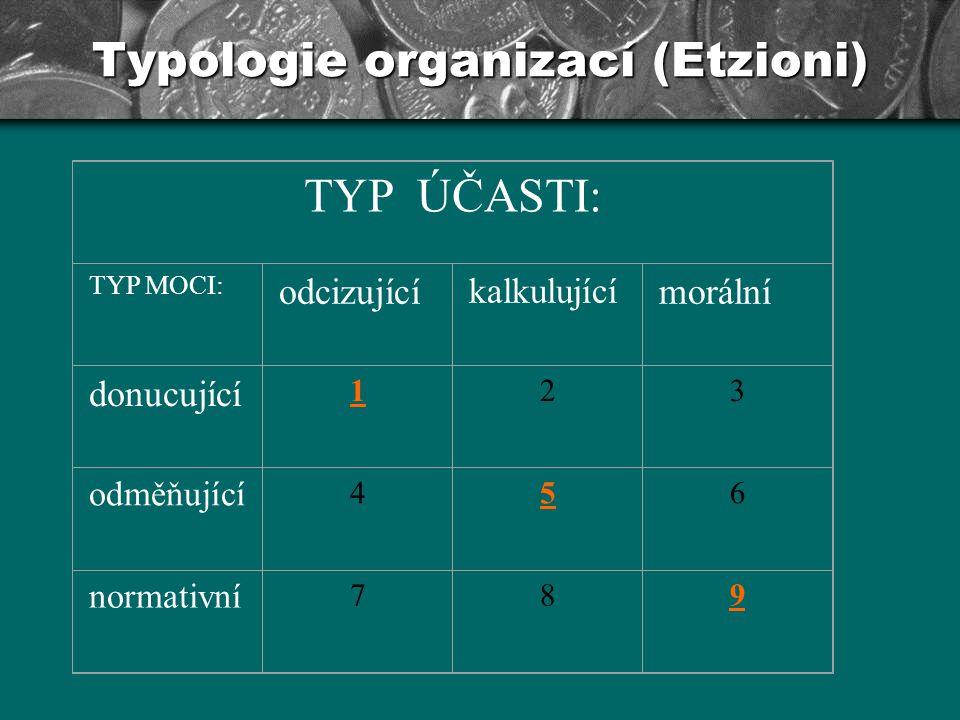 Typologie organizací (Etzioni) Typ č.1: Donucovací organizace: K dosažení hlavního cíle organizace, tedy izolace chovanců a dohledu nad nimi, je užíváno síly včetně fyzického násilí.