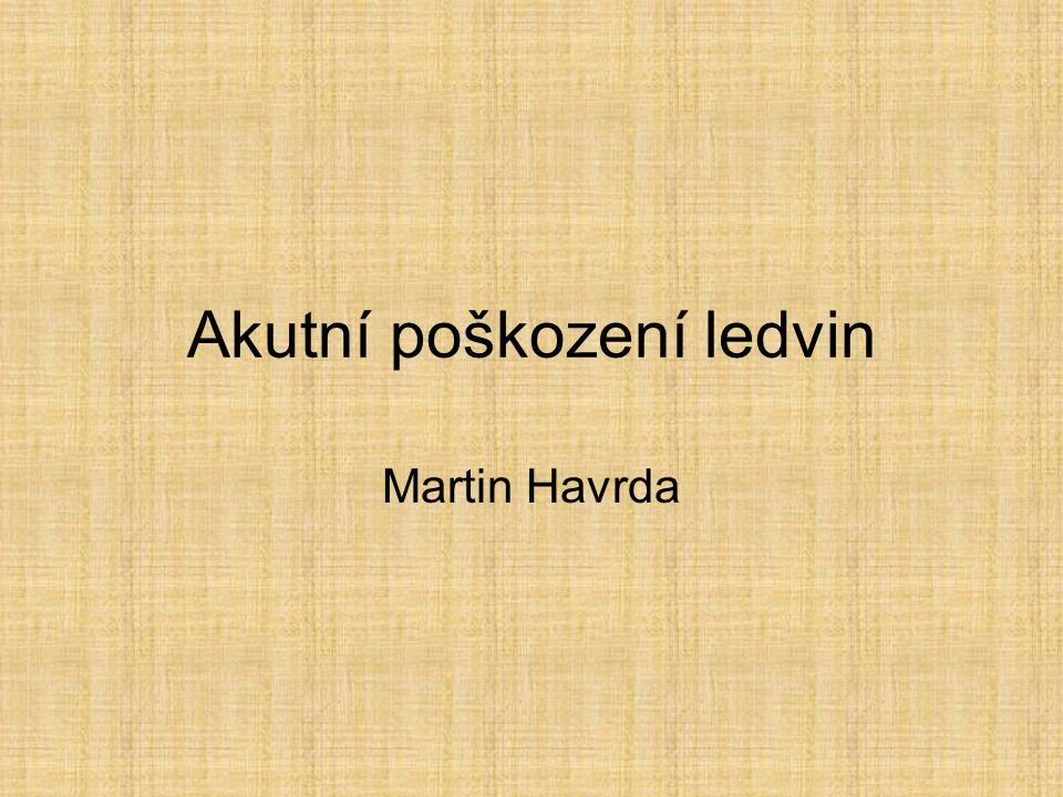 Akutní poškození ledvin Martin Havrda