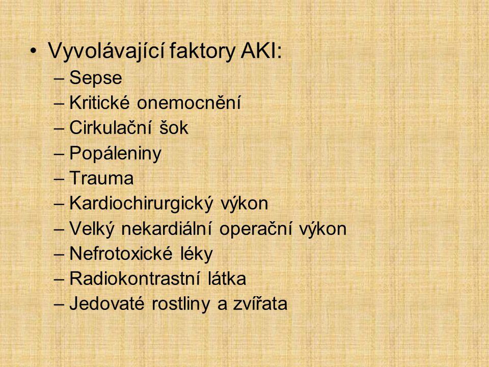 Vyvolávající faktory AKI: –Sepse –Kritické onemocnění –Cirkulační šok –Popáleniny –Trauma –Kardiochirurgický výkon –Velký nekardiální operační výkon –