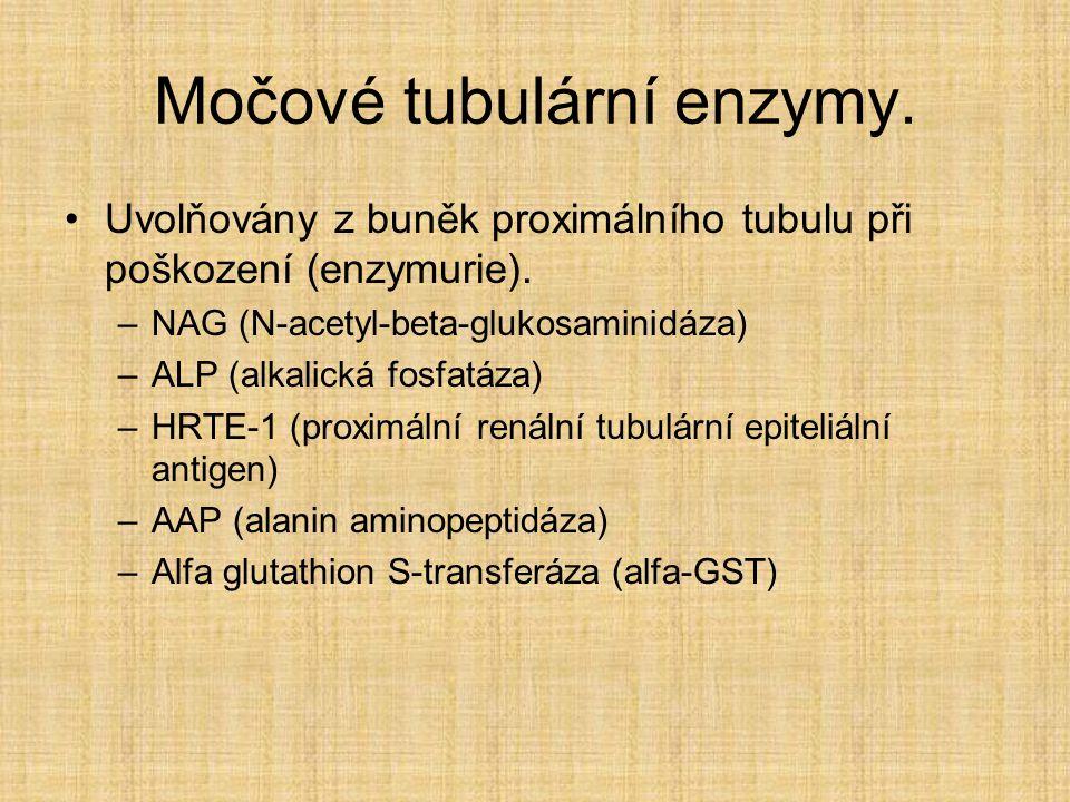 Močové tubulární enzymy. Uvolňovány z buněk proximálního tubulu při poškození (enzymurie). –NAG (N-acetyl-beta-glukosaminidáza) –ALP (alkalická fosfat