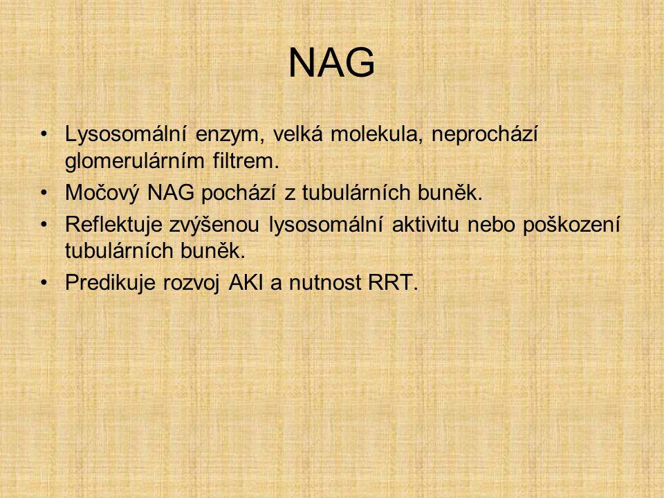 NAG Lysosomální enzym, velká molekula, neprochází glomerulárním filtrem. Močový NAG pochází z tubulárních buněk. Reflektuje zvýšenou lysosomální aktiv
