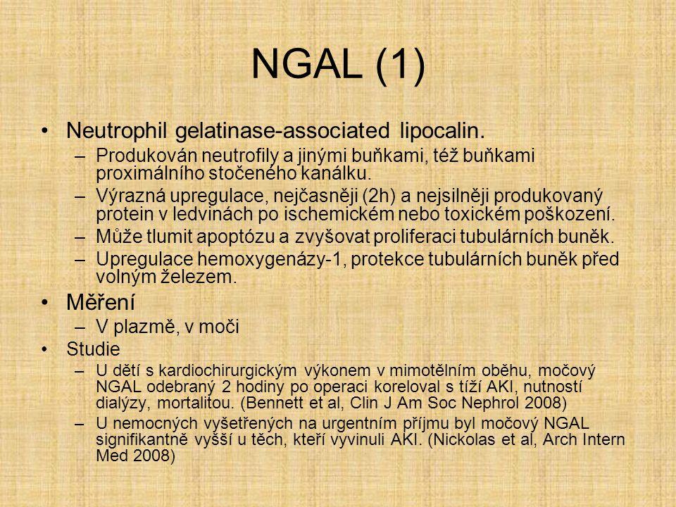 NGAL (1) Neutrophil gelatinase-associated lipocalin. –Produkován neutrofily a jinými buňkami, též buňkami proximálního stočeného kanálku. –Výrazná upr