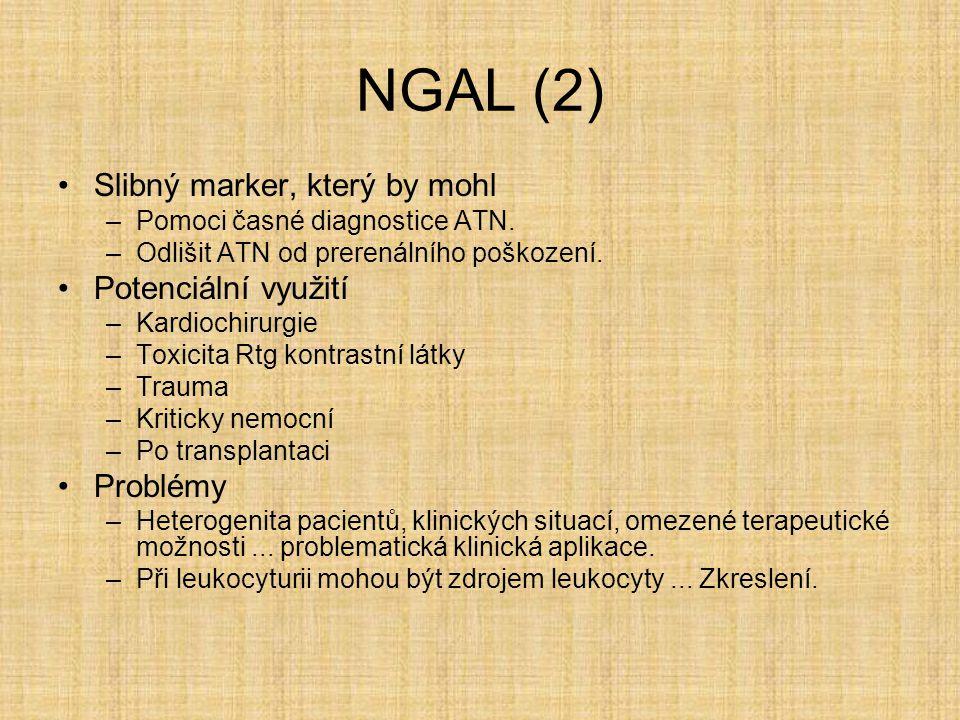 NGAL (2) Slibný marker, který by mohl –Pomoci časné diagnostice ATN. –Odlišit ATN od prerenálního poškození. Potenciální využití –Kardiochirurgie –Tox