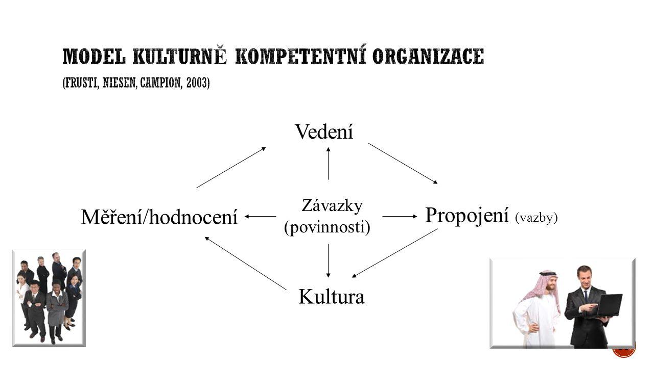 35 Závazky (povinnosti) Vedení Měření/hodnocení Propojení (vazby) Kultura