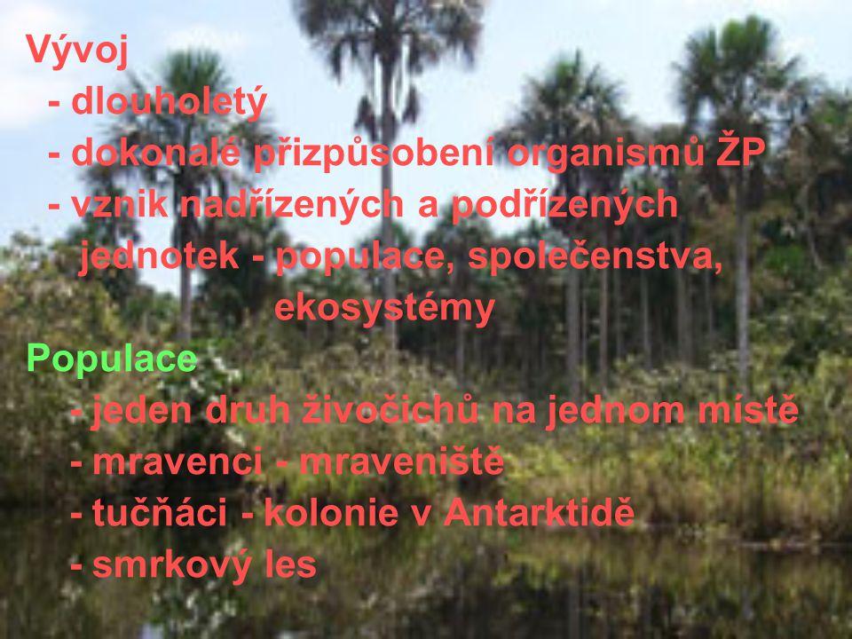 Vývoj - dlouholetý - dokonalé přizpůsobení organismů ŽP - vznik nadřízených a podřízených jednotek - populace, společenstva, ekosystémy Populace - jed