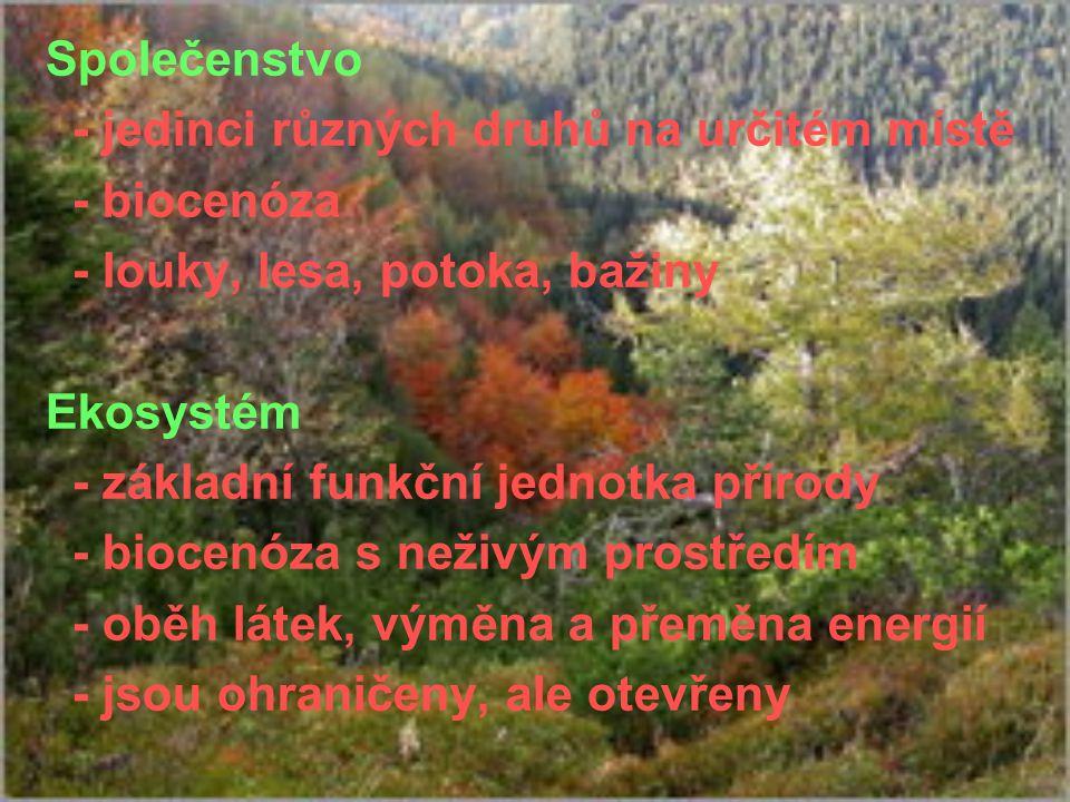 Společenstvo - jedinci různých druhů na určitém místě - biocenóza - louky, lesa, potoka, bažiny Ekosystém - základní funkční jednotka přírody - biocen
