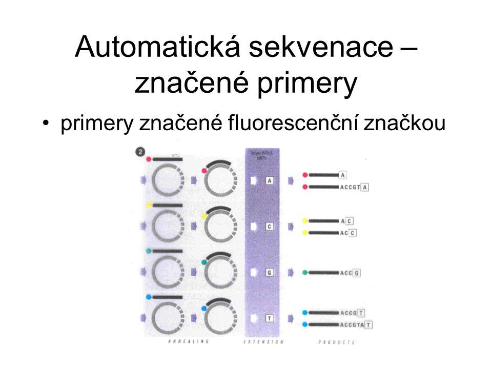 Automatická sekvenace – značené primery primery značené fluorescenční značkou
