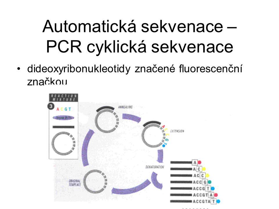Automatická sekvenace – PCR cyklická sekvenace dideoxyribonukleotidy značené fluorescenční značkou
