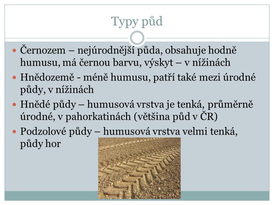 Typy půd Černozem – nejúrodnější půda, obsahuje hodně humusu, má černou barvu, výskyt – v nížinách Hnědozemě - méně humusu, patří také mezi úrodné půd
