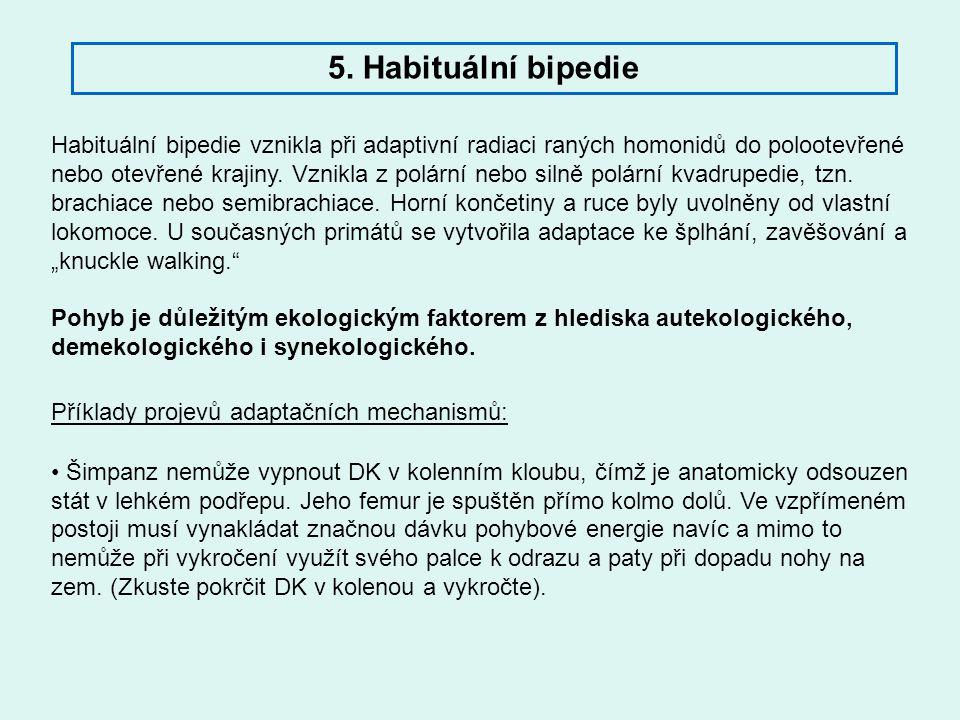 Habituální bipedie vznikla při adaptivní radiaci raných homonidů do polootevřené nebo otevřené krajiny. Vznikla z polární nebo silně polární kvadruped