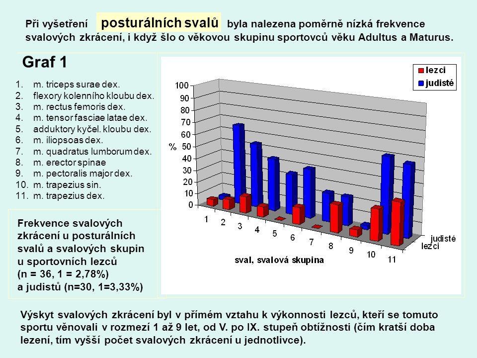 Při vyšetření posturálních svalů byla nalezena poměrně nízká frekvence svalových zkrácení, i když šlo o věkovou skupinu sportovců věku Adultus a Matur