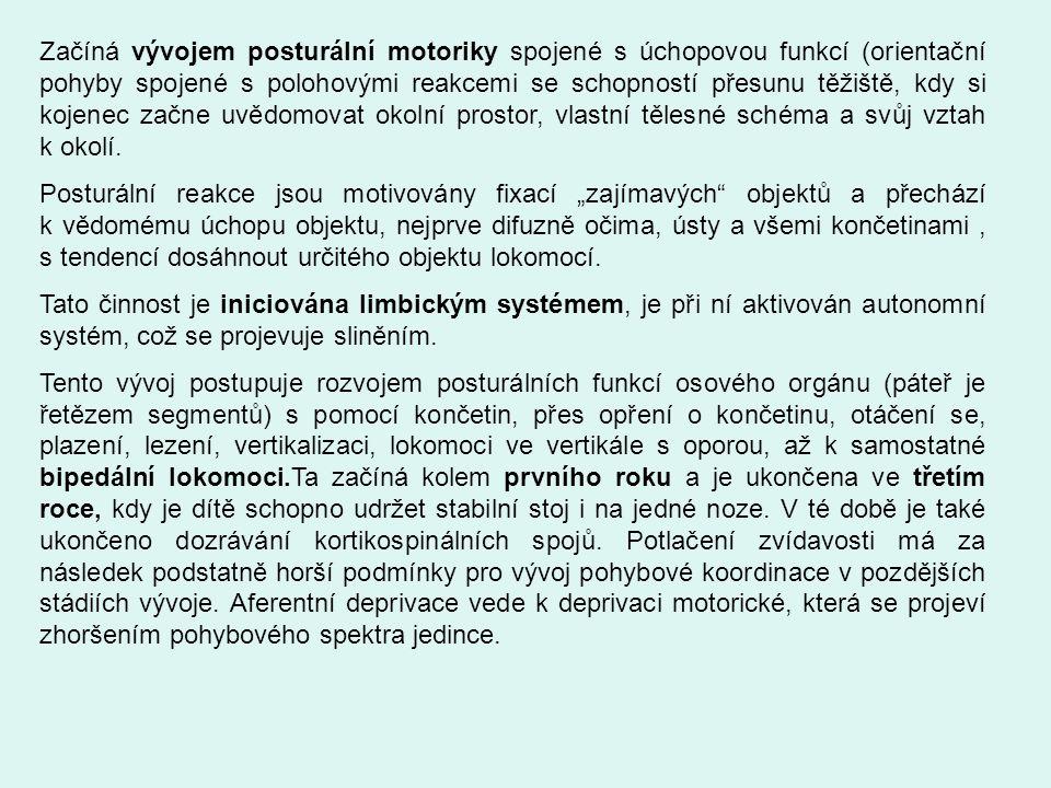 Začíná vývojem posturální motoriky spojené s úchopovou funkcí (orientační pohyby spojené s polohovými reakcemi se schopností přesunu těžiště, kdy si k