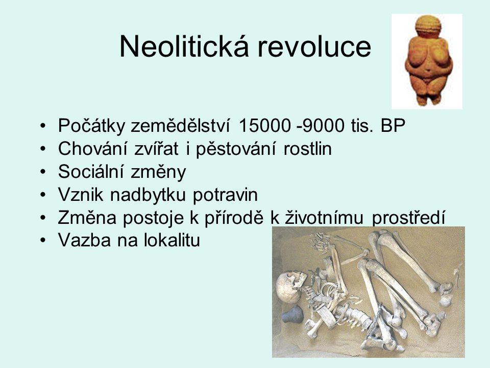 Neolitická revoluce Počátky zemědělství 15000 -9000 tis. BP Chování zvířat i pěstování rostlin Sociální změny Vznik nadbytku potravin Změna postoje k