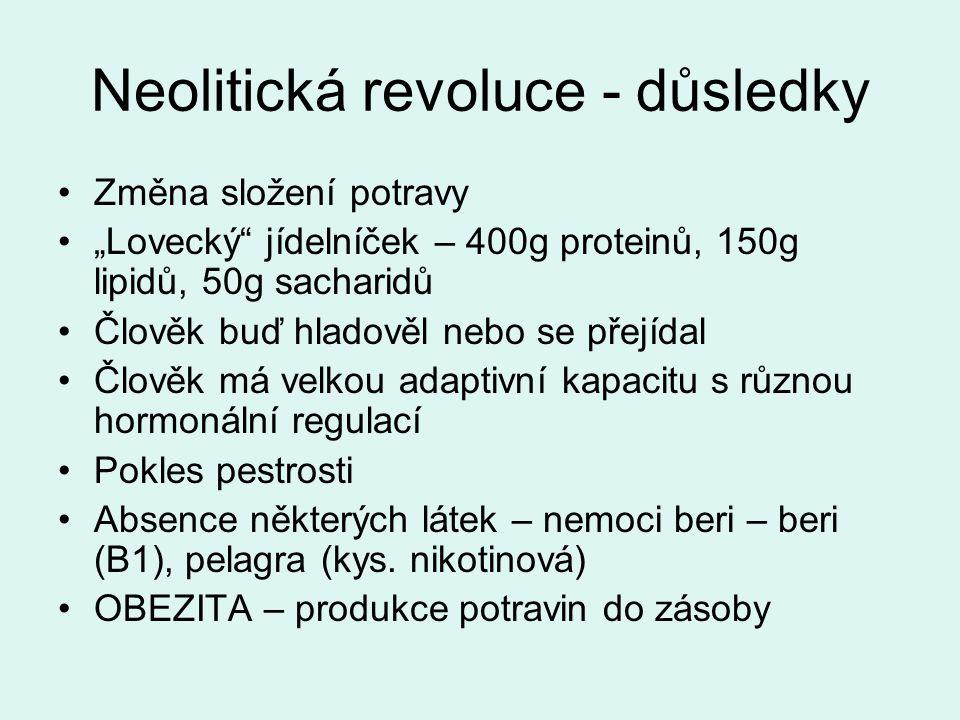 """Neolitická revoluce - důsledky Změna složení potravy """"Lovecký jídelníček – 400g proteinů, 150g lipidů, 50g sacharidů Člověk buď hladověl nebo se přejídal Člověk má velkou adaptivní kapacitu s různou hormonální regulací Pokles pestrosti Absence některých látek – nemoci beri – beri (B1), pelagra (kys."""