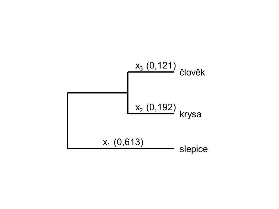 x 1 (0,613) x 2 (0,192) x 3 (0,121) člověk krysa slepice