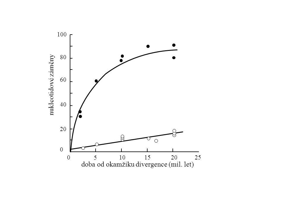 doba od okamžiku divergence (mil. let) 5 25 0 2020 6060 80 100100 40 2015100 nukleotidové záměny