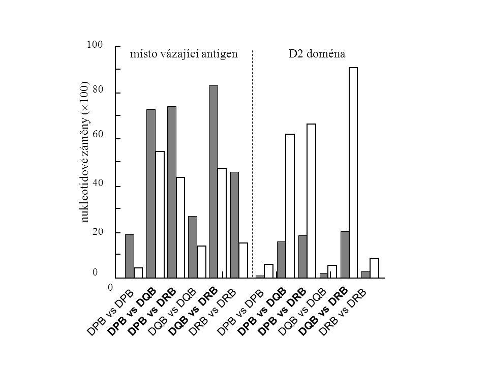 využítí kodónu (%) 0 20 40 60 80 100 silně exprimované geny CUG 0 20 40 60 80 100 silně exprimované geny CUACUCUUGUUA CUUCUG 0 20 40 60 80 100 slabě exprimované geny CUACUCUUGUUA CUUCUG 0 20 40 60 80 100 slabě exprimované geny CUG a) Escherichia colib) Saccharomyces cerevisiae využítí kodónu (%)