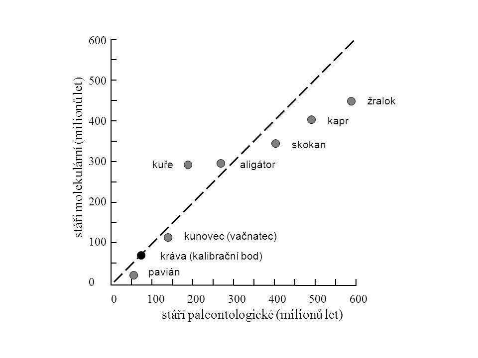 substituční rychlost 0 0,05 0,15 0,20 0,10 0,25 0,30 nesynonymní (Kn)synonymní (Ks)Kn/Ks