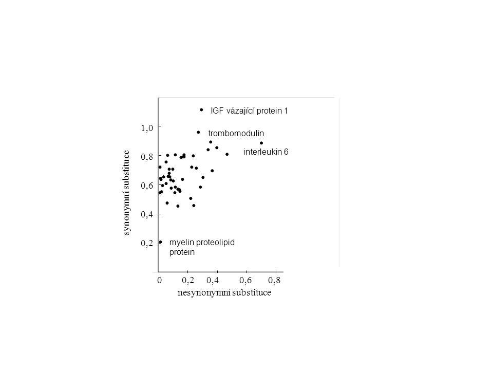 0,20,40,60,80 0,2 0,4 0,6 0,8 1,0 synonymní substituce nesynonymní substituce interleukin 6 IGF vázající protein 1 myelin proteolipid protein trombomodulin