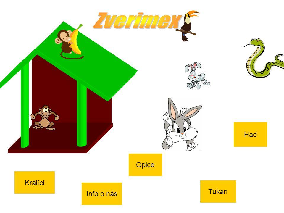 Králíci Info o nás Opice Tukan Had
