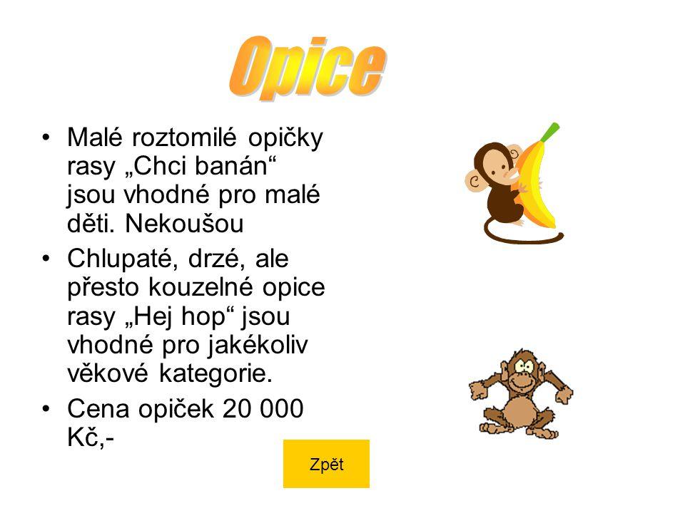"""Malé roztomilé opičky rasy """"Chci banán jsou vhodné pro malé děti."""