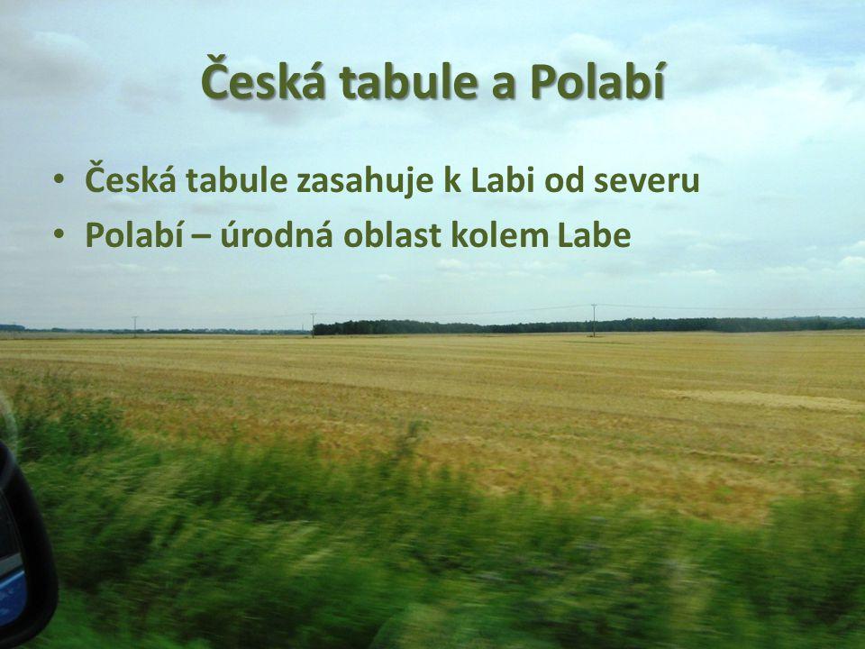 Česká tabule a Polabí Česká tabule zasahuje k Labi od severu Polabí – úrodná oblast kolem Labe