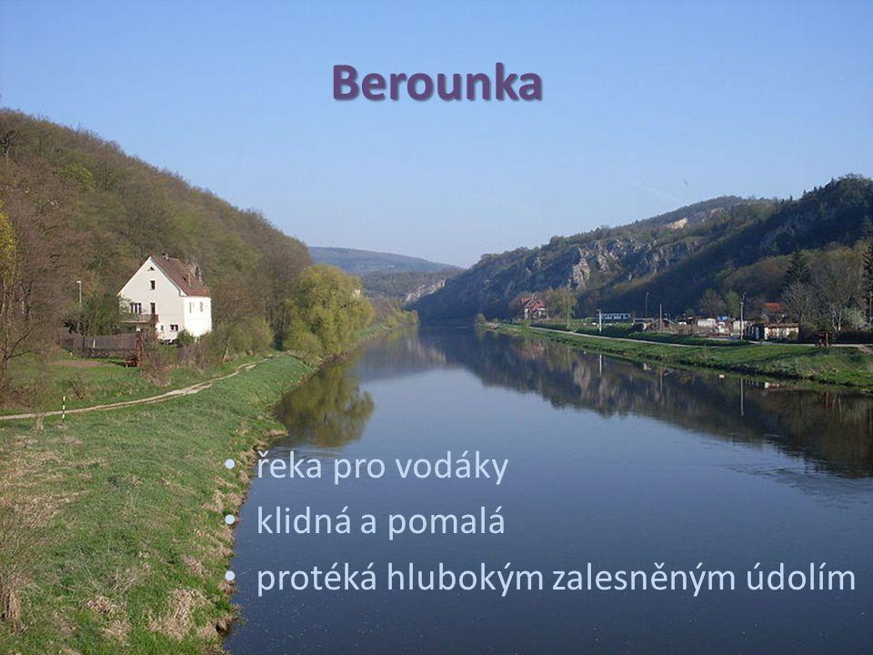 Berounka řeka pro vodáky klidná a pomalá protéká hlubokým zalesněným údolím