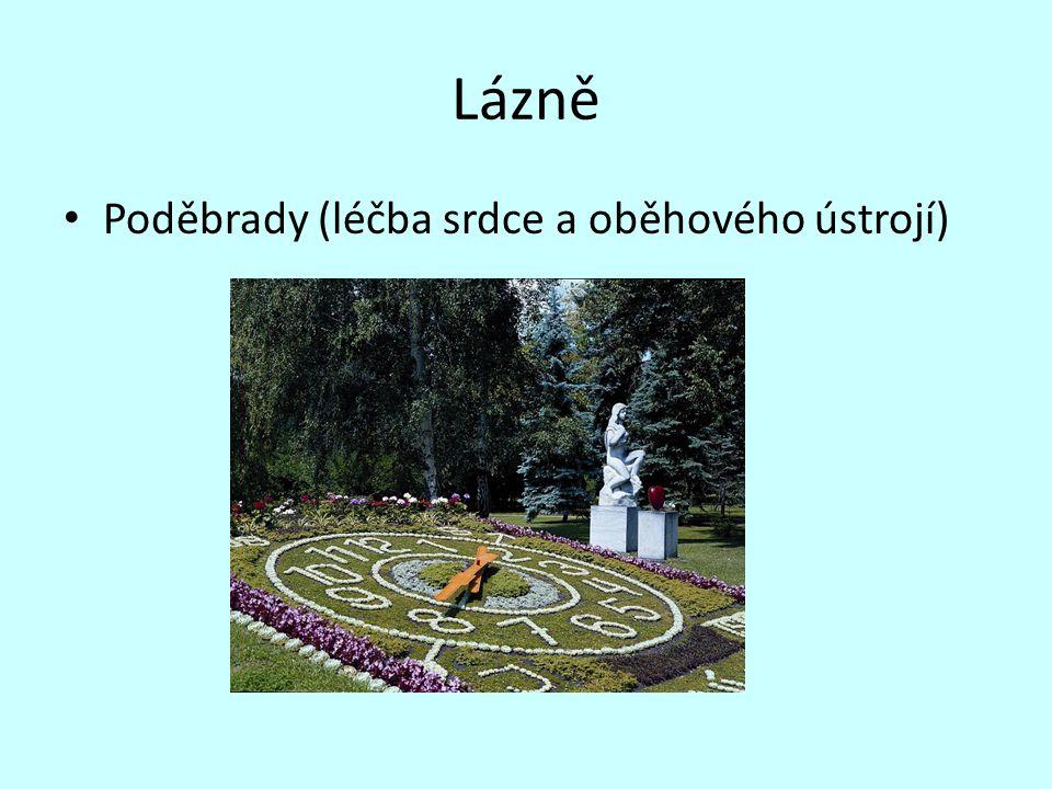Lázně Poděbrady (léčba srdce a oběhového ústrojí)