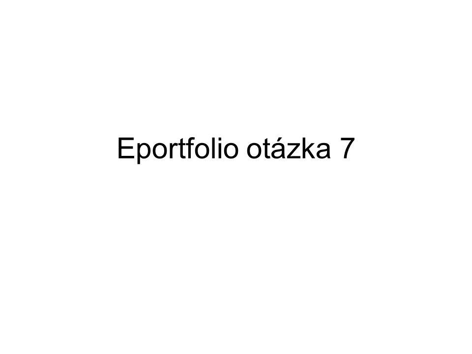 Eportfolio otázka 7