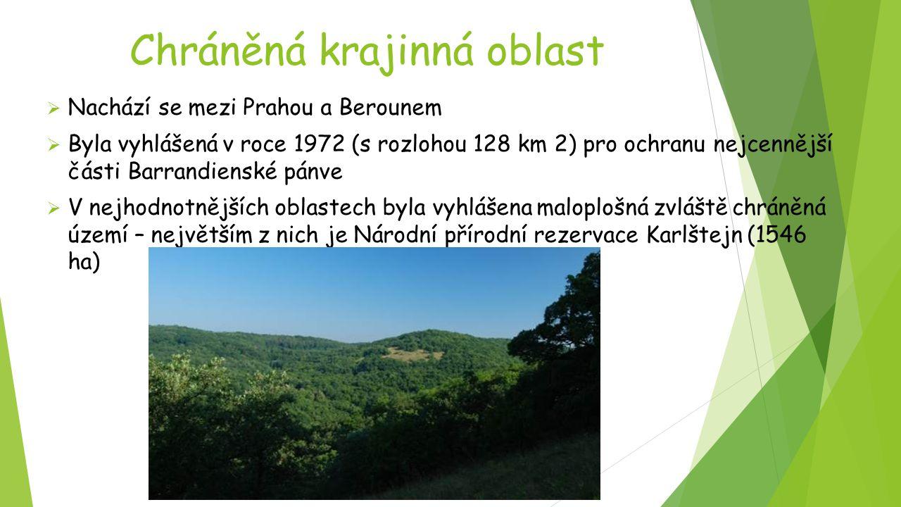 Chráněná krajinná oblast  Nachází se mezi Prahou a Berounem  Byla vyhlášená v roce 1972 (s rozlohou 128 km 2) pro ochranu nejcennější části Barrandi