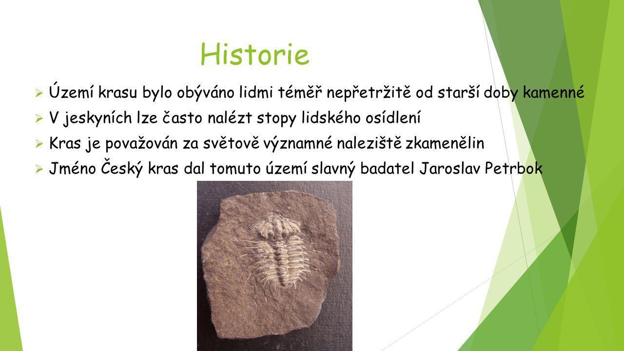 Historie  Území krasu bylo obýváno lidmi téměř nepřetržitě od starší doby kamenné  V jeskyních lze často nalézt stopy lidského osídlení  Kras je po