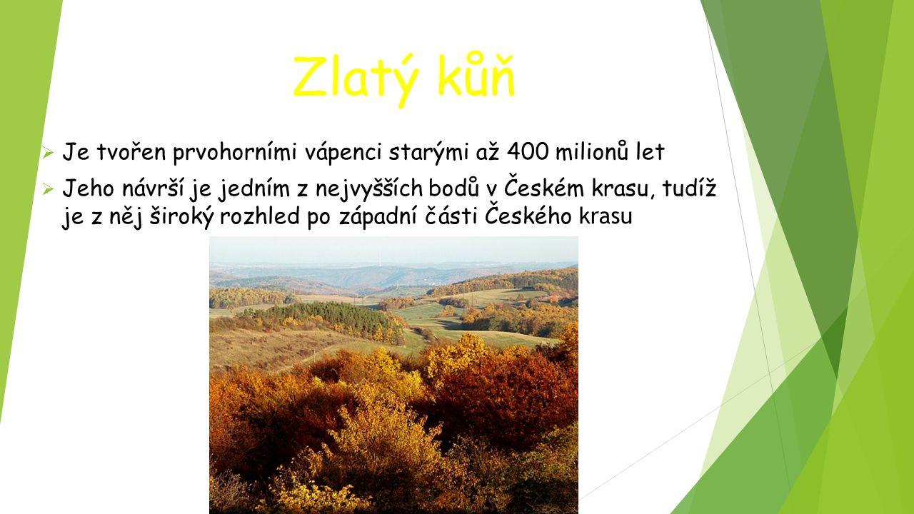 Zlatý kůň  Je tvořen prvohorními vápenci starými až 400 milionů let  Jeho návrší je jedním z nejvyšších bodů v Českém krasu, tudíž je z něj široký r