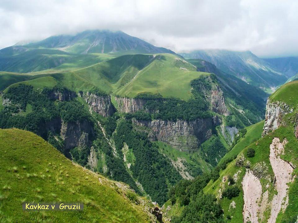 Daktylek Kavkaz v Gruzii