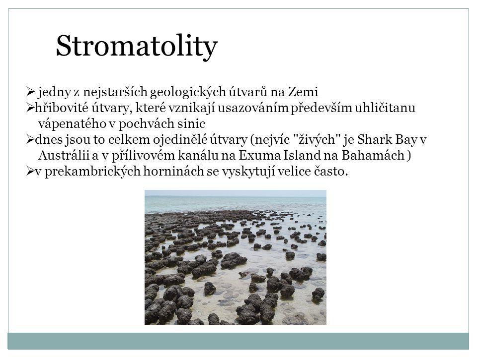 Stromatolity  jedny z nejstarších geologických útvarů na Zemi  hřibovité útvary, které vznikají usazováním především uhličitanu vápenatého v pochvách sinic  dnes jsou to celkem ojedinělé útvary (nejvíc živých je Shark Bay v Austrálii a v přílivovém kanálu na Exuma Island na Bahamách )  v prekambrických horninách se vyskytují velice často.