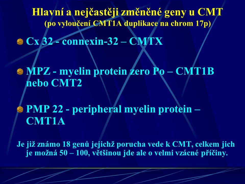 Hlavní a nejčastěji změněné geny u CMT (po vyloučení CMT1A duplikace na chrom 17p) Cx 32 - connexin-32 – CMTX MPZ - myelin protein zero Po – CMT1B neb