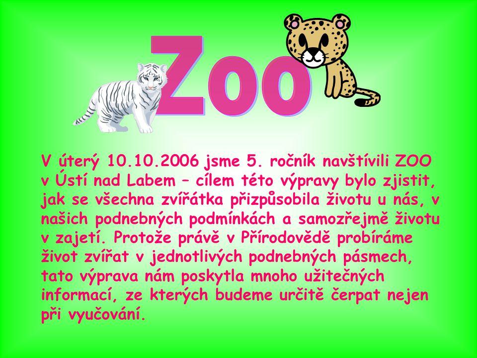 V úterý 10.10.2006 jsme 5. ročník navštívili ZOO v Ústí nad Labem – cílem této výpravy bylo zjistit, jak se všechna zvířátka přizpůsobila životu u nás