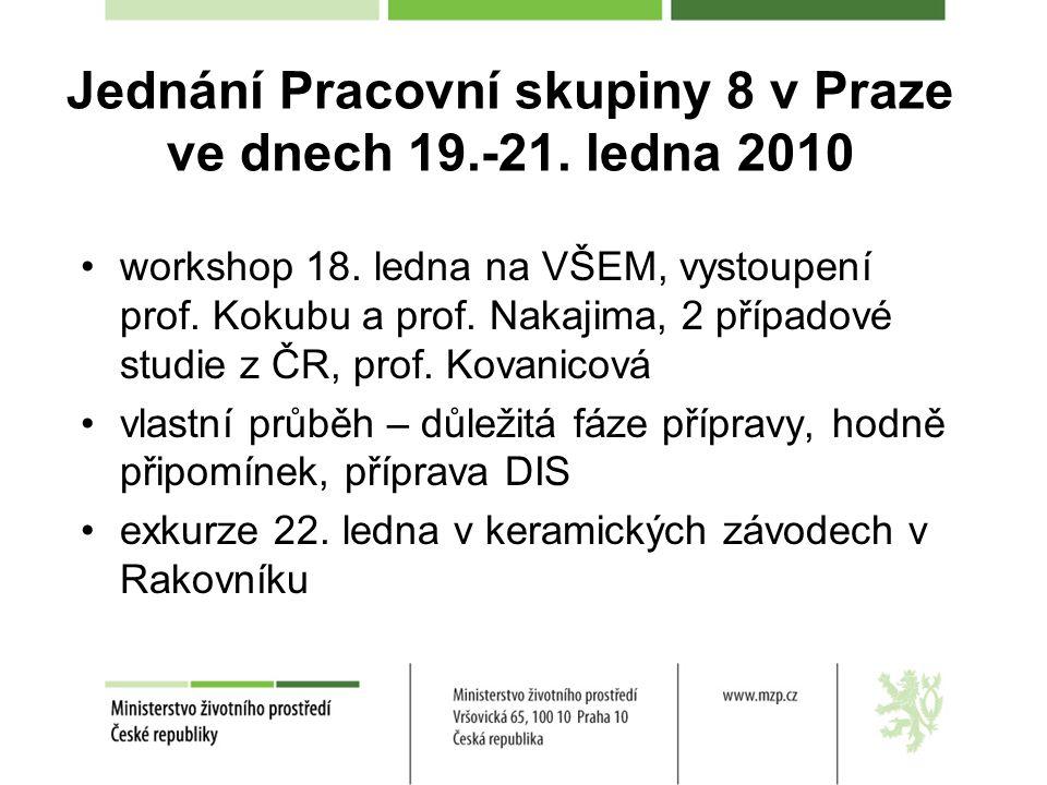 Jednání Pracovní skupiny 8 v Praze ve dnech 19.-21. ledna 2010 workshop 18. ledna na VŠEM, vystoupení prof. Kokubu a prof. Nakajima, 2 případové studi