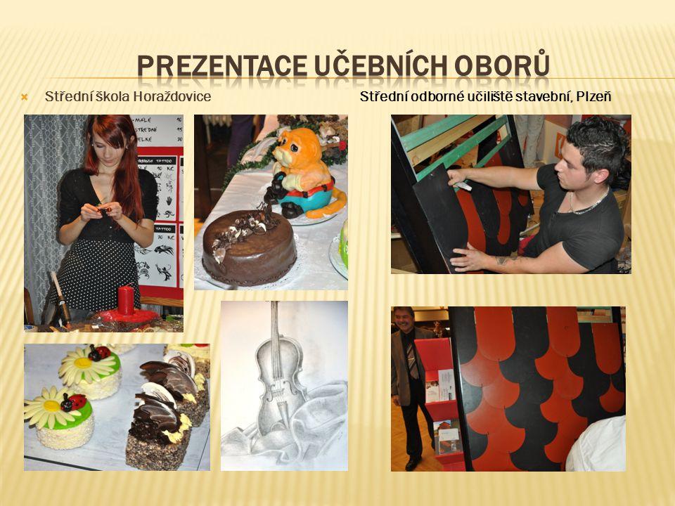  Střední škola HoraždoviceStřední odborné učiliště stavební, Plzeň