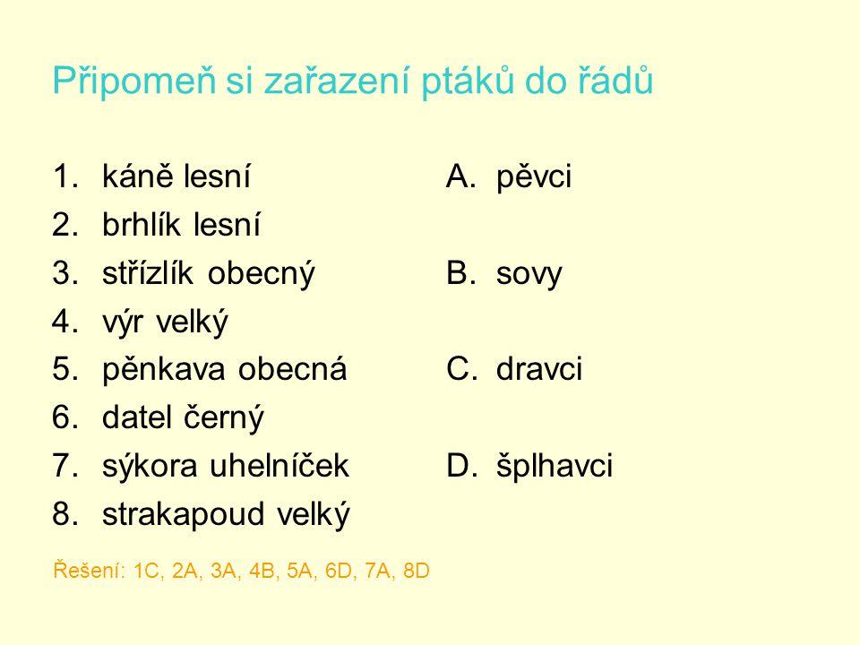 Připomeň si zařazení ptáků do řádů 1.káně lesní 2.brhlík lesní 3.střízlík obecný 4.výr velký 5.pěnkava obecná 6.datel černý 7.sýkora uhelníček 8.strakapoud velký A.pěvci B.sovy C.dravci D.šplhavci Řešení: 1C, 2A, 3A, 4B, 5A, 6D, 7A, 8D