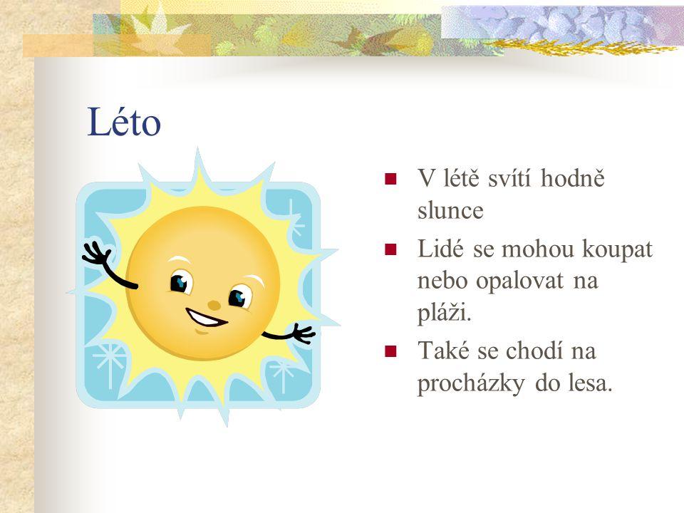 Léto V létě svítí hodně slunce Lidé se mohou koupat nebo opalovat na pláži.
