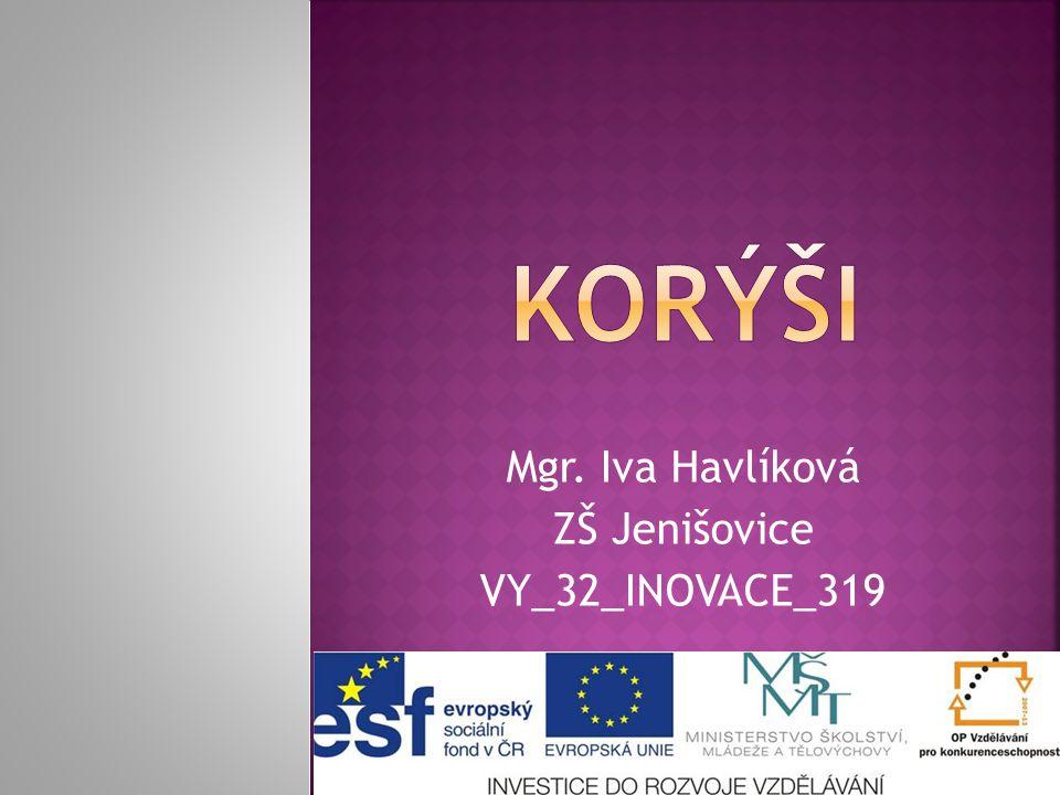 Mgr. Iva Havlíková ZŠ Jenišovice VY_32_INOVACE_319