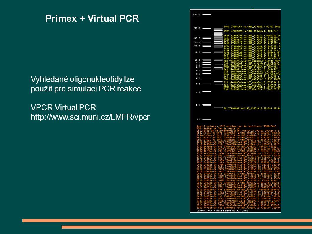 Vyhledané oligonukleotidy lze použít pro simulaci PCR reakce VPCR Virtual PCR http://www.sci.muni.cz/LMFR/vpcr Primex + Virtual PCR